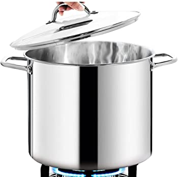 HOMICHEF 12 Quart Large Stock Pot with Glass Lid